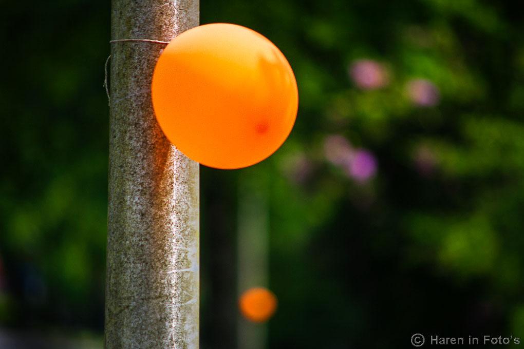 RTBB-20140607-7636-ballonnen